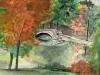 Potter's Lake, KU CampusSeries