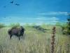 Prairie Buffalo By Cathy Martin