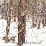 A Raccoon Christmas